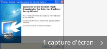 Montage de captures d'écran de Sothink Flash Downloader for Internet Explorer
