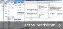 Montage de captures d'écran de Interlinear Scripture Analyzer basic