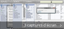 Montage de captures d'écran de iTunes Lyrics Importer